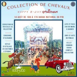 Collection de Chevaux